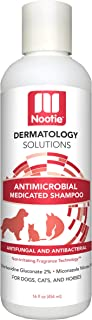 Medicated Dog Shampoo: Antifungal, Antibacterial Dog Shampoo - Lather Then Rinse To Soothe Irritation and Strengthen Coat ...