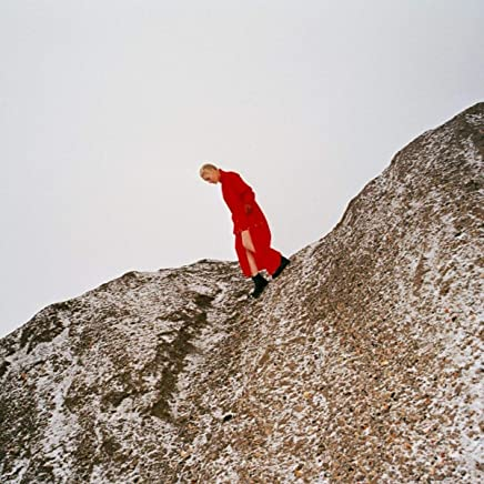 Cate Le Bon - Reward (2019) LEAK ALBUM