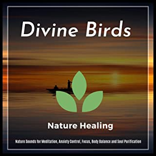 Divine Birds - Nature Sounds For Meditation, Anxiety Control, Focus, Body Balance And Soul Purification