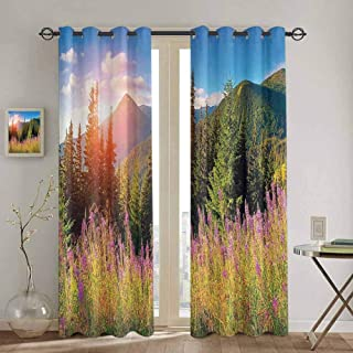 Homrkey Apartment Decor Shading Insulated Curtain Fall Season Landscape Picture in Mountains with Flowers Alpine Trees Forest at Sunrise Kitchen Curtain W100 x L84 Inch Green Pink