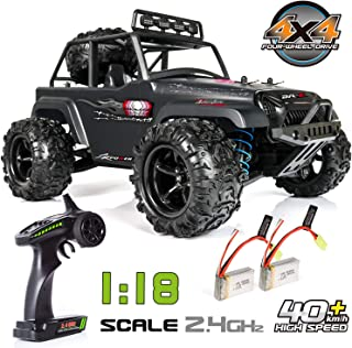 Exercise N Play RC Truck RC Car, Remote Control Car, Terrain RC Cars, Electric Remote Control Off Road Monster Truck, 1:18 Scale 2.4Ghz Radio 4WD Fast 30+ MPH RC Car (1:18B)