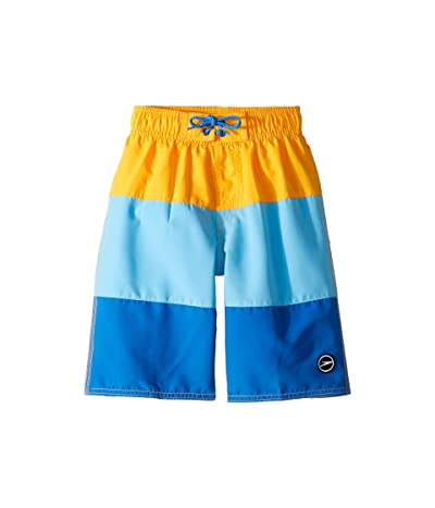 Speedo Kids Blocked Volley Shorts (Little Kids/Big Kids) (Autumn) Boy
