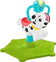 Best Fisher-Price Bounce and Spin Puppy Review