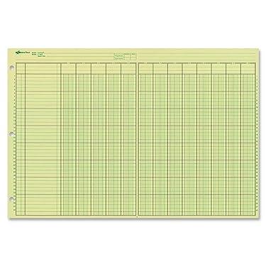 "NATIONAL Analysis Pad, 13 Columns, Green Paper, 11 x 16.375"", 50 Sheets (45613)"