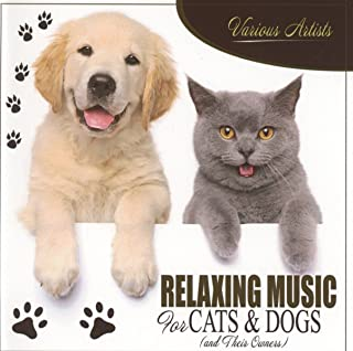 Relaxing Music For Cats & Dogs Their Owners Calming Songs to Calm Down & Relax Your Pet