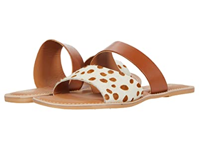 Matisse Coastal (Brown Spot Leather) Women