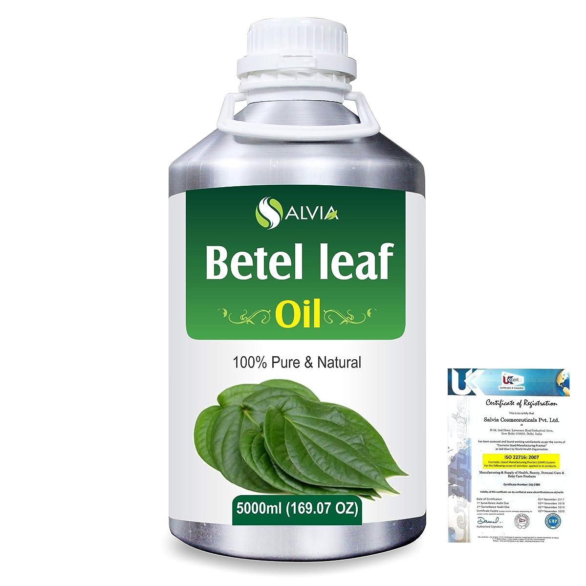 足音航空便送るBetel Leaf (Piper Betle) 100% Natural Pure Essential Oil 5000ml/169fl.oz.