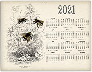 2021 Calendar - Vintage Bumblebees - 11x14 Unframed Calendar Art Print - Great Decor and Gift for Beekeepers and Nature Lovers Under $15