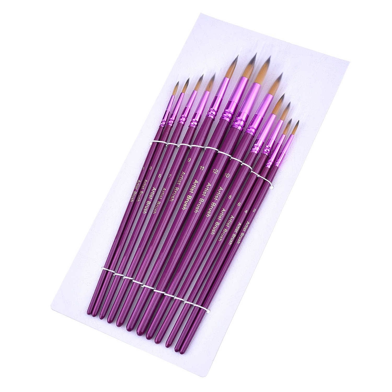 Purple Mudder 12 Pieces Artist Paint Brushes Fine Paint Brush for Acrylic Watercolor Oil Painting