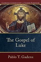 Best gospel commentary catholic Reviews