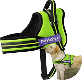 Best all in one dog harness Reviews