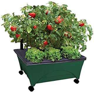 Emsco Group City Pickers 24.5 in. x 20.5 in. Patio Raised Garden Bed Grow Box Kit with Watering System and Casters in Evergreen