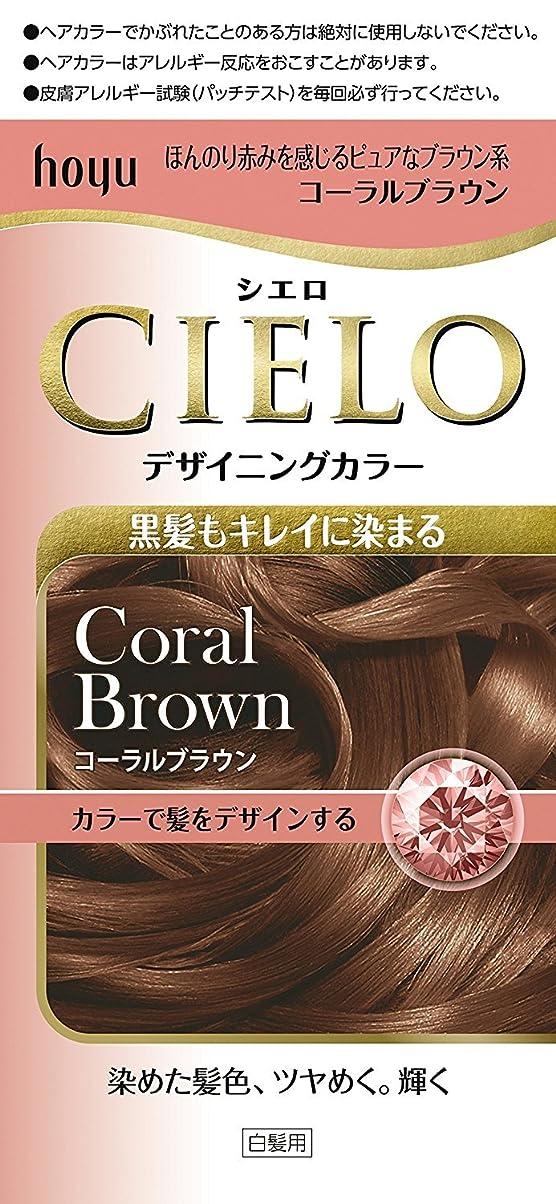 移植不透明な混乱ホーユー シエロ デザイニングカラー (コーラルブラウン) ×6個