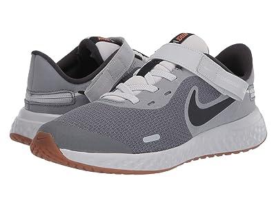 Nike Kids Flyease Revolution 5 (Big Kid) (Light Smoke Grey/Dark Smoke Grey/Photon Dust) Kids Shoes