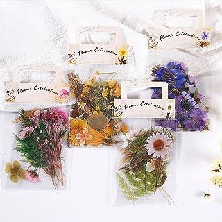 160 Pcs Stickers Fleurs Plantes Set,Autocollants Scrapbooking Transparents,DIY Décoratifs Stickers pour Scrapbooking Journ...
