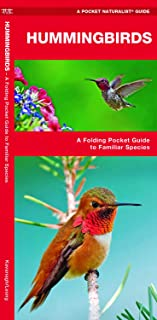 Hummingbirds: A Folding Pocket Guide to Familiar Species (Wildlife and Nature Identification)