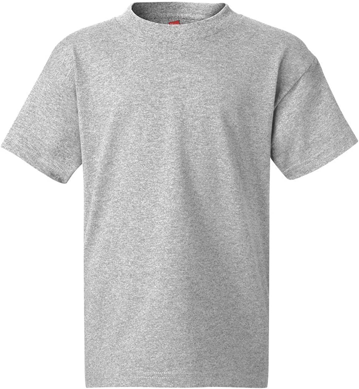 Hanes Authentic TAGLESS Kids' Cotton T-Shirt_Light Steel