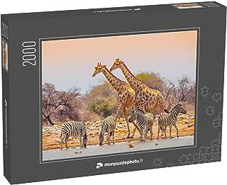 monpuzzlephoto Puzzle 2000 pièces Deux girafes et Quatre zèbres à Un Point d'eau dans Le Parc National d'Etosha, Namibie