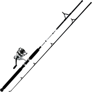 Daiwa D-Wave Saltwater Spinning Combo (2 Piece)