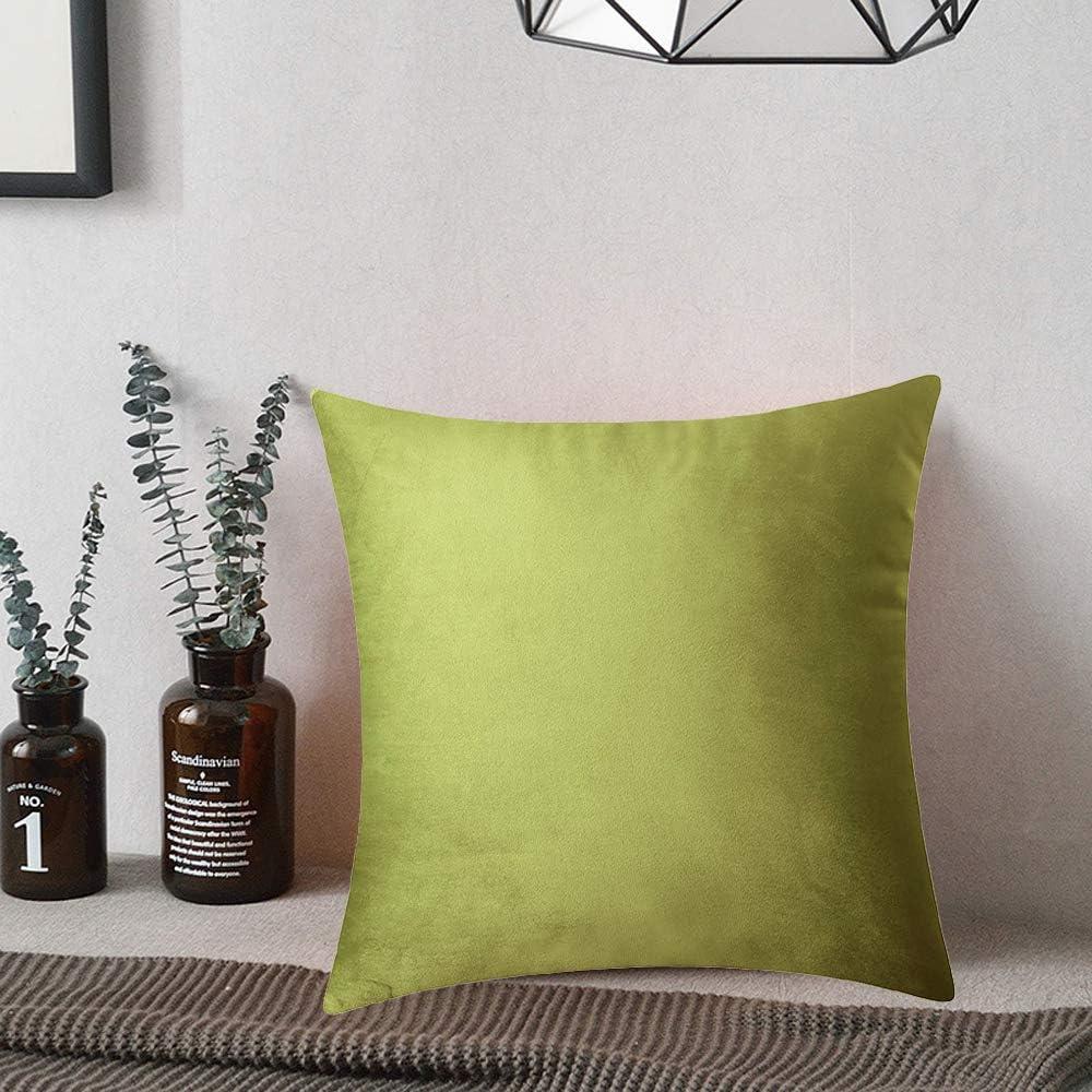 18x18 inch BlueCosto 1x Chartreuse Decorative Velvet Cushion Cover Throw Pillow Covers Square Pillowcase Car 45cm x 45cm