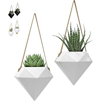 """Geometric Ceramic Hanging Planters 