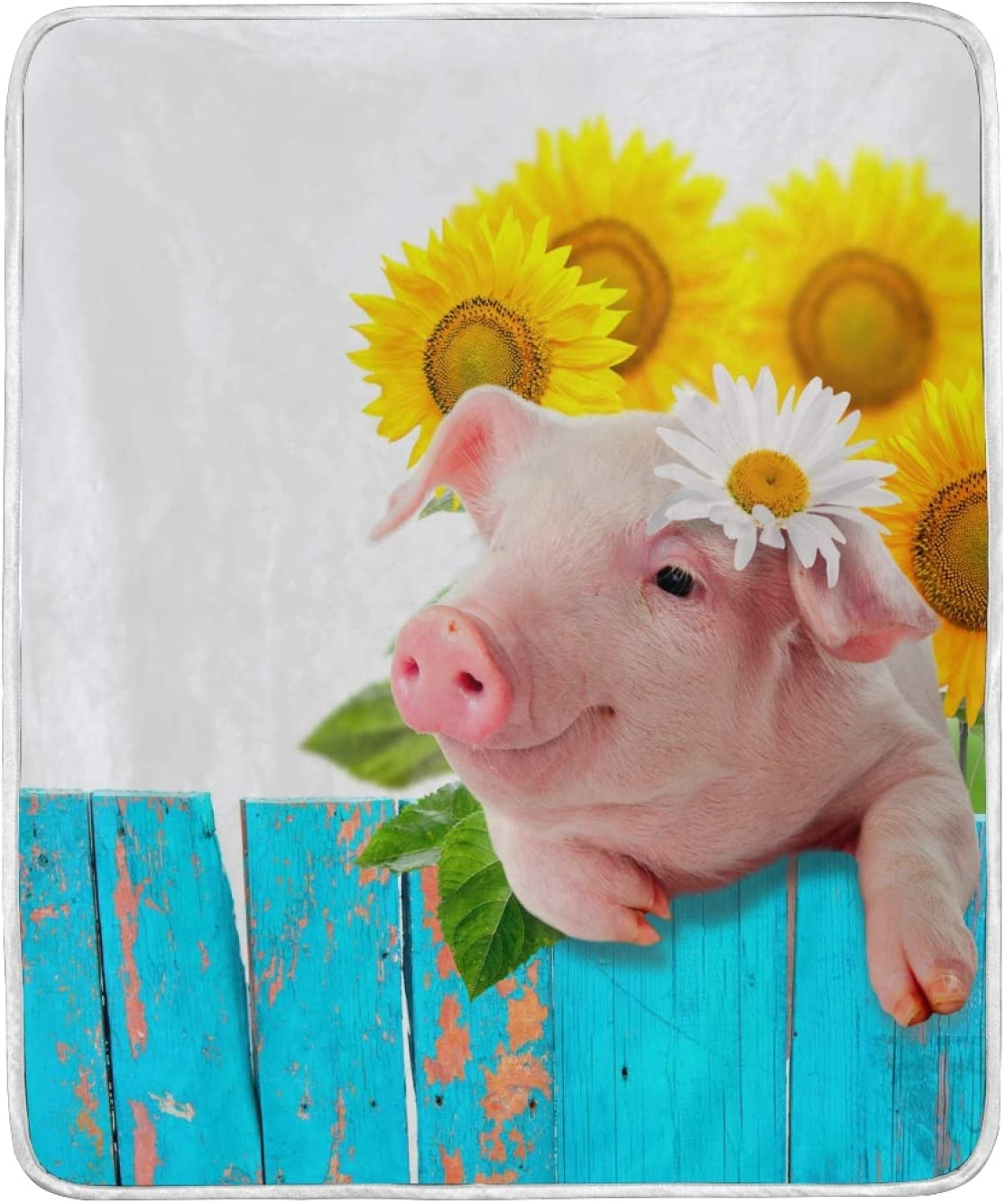 NOVTO Throw Animer Free Shipping New and price revision Blanket Funny Pig Warm Super Sunflower Soft Blankets