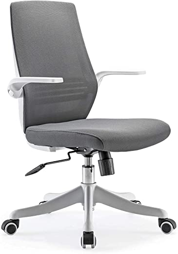 SIHOO Mesh-Bürostuhl, Schreibtischstuhl, atmungsaktiver Kompaktstuhl, Taillenstütze, anhebbare und umkehrbare Armlehne, leise Nylonrolle, Bürostuhl…