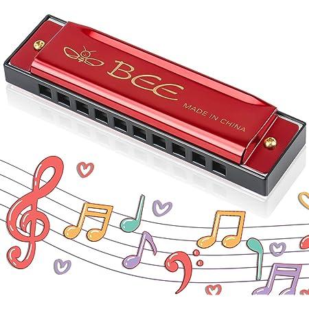 Harmonica Enfants, Harmonica Diatonique, Harmonica10 Trous pour Enfants, Instrument pour Débutants, Cadeaux pour Les Étudiants et Les Enfants