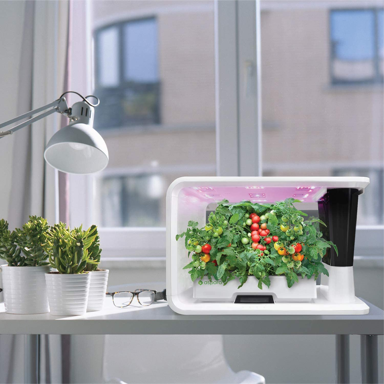 White aspara GS1003-W 16 Hole Removable Reservoir Hydroponic Grower
