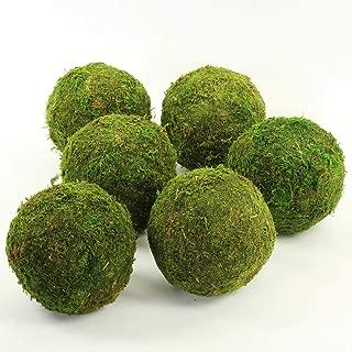 Koyal Wholesale 6-Pack Green Moss Balls, 6-Inch