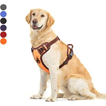 Hundegeschirr Hunde Gehen Seilweste Pet Brustgurt Schwarz//Blau//Gr/ün//Rot//Gelb 3XS M L 1PCS Pet Harness S 2XS XS Color : Black, Size : 2XS