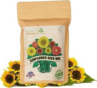 بسته تنوع دانه های آفتابگردان NatureZ Edge 1300 ، دانه های آفتابگردان برای کاشت ، دریافت دانه های آفتابگردان بیشتر برای کاشت ، غیر GMO