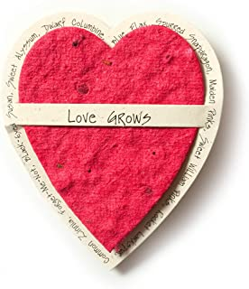 Bloomin Mini Cranberry Red Heart-Shaped Seed Paper Enclosure Cards 9 Card Set - Perfect for Valentine's Day, Mother's Day and Wedding Anniversaries! Size: 2.25 x 2.25
