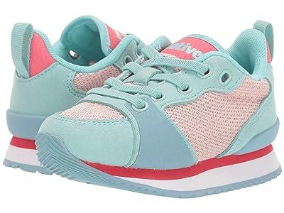 Native Kids Shoes Dartmouth (Toddler/Little Kid) (Hydrangea Blue/Dust Pink/Sakura Pink/Fuji Rubber) Girl
