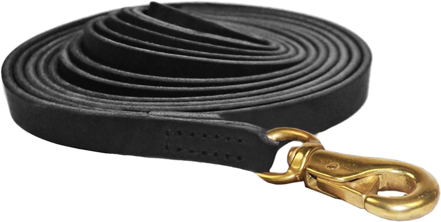 Manufacturer direct delivery Dean and Tyler Stitched Track Great interest Dog 4-In 35-Feet 3 by Leash Black