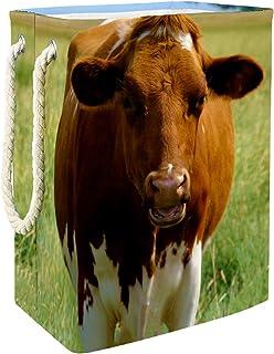 Yuzheng Panier à Linge avec Support Boîte de Rangement étanche Pliable et Organisateur Panier à Panier à Linge Sale Animal...
