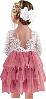 2Bunnies Girl Baby Girl V Back Vintage Floral Lace A-Line Tutu Tulle Tiered Layer Party Flower Girl Dress