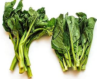 Chinese Broccoli Seeds - Brassica Oleracea Seeds - GAI LAN Seeds