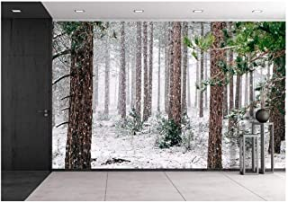 wall26 - Pine Trees Covered with Snow - Removable Wall Mural | Self-Adhesive Large Wallpaper - 100x144 inches