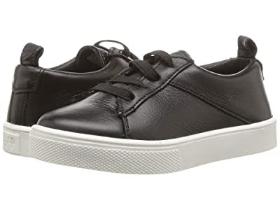 Freshly Picked Classic Lace-Up Sneaker (Toddler/Little Kid) (Black) Kid