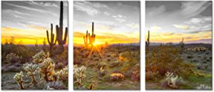 sechars 3 Piece Canvas Wall Art Golden Sunset in Arizona Sonoran Desert Landscape Painting Saguaro Cactus Pictures Canvas Print Southwest Decor for Bedroom Living Room Ready to Hang