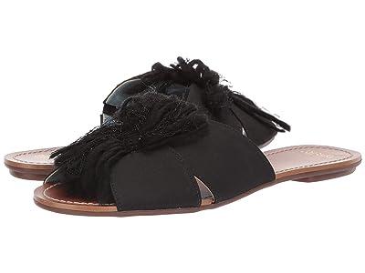 Frances Valentine Trez Slide Sandal (Black/Black Yarn) Women
