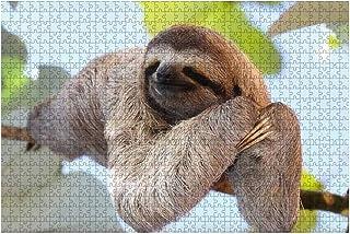 1000ピース ジグソーパズル 風景 sloth たいだ らいだ らんだ 不精 嬾惰 怠情 懶惰 無精 しゅみゃく 子供 おもちゃ 室内 プレゼント 誕生日プレゼント 女の子 男の子 知育玩具