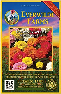 Everwilde Farms - 200 Dahlia Flowered Mix Zinnia Wildflower Seeds - Gold Vault Jumbo Seed Packet