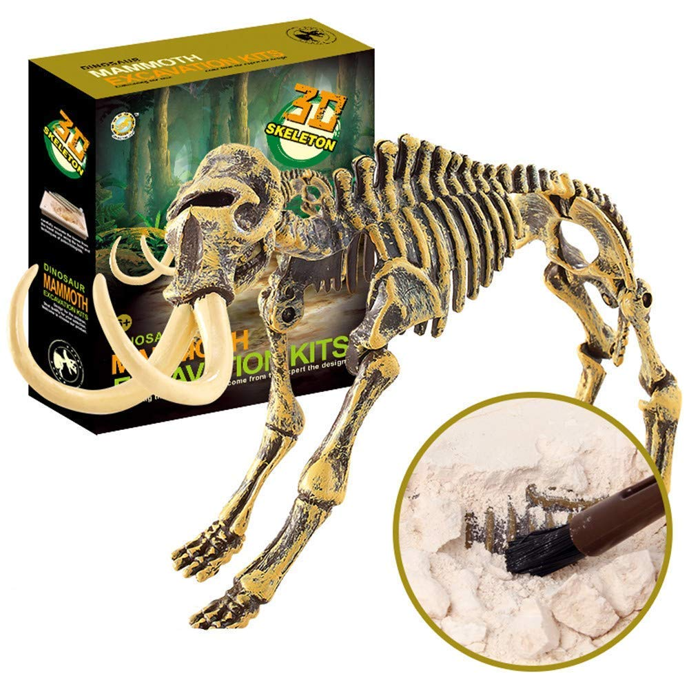 Mountainish JamBer Dig Up Dinosaurs Set Girls Science Educational Realistic Toys for Boys Dinosaur Fossil Digging kit for Kids T-REX