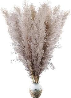 GoMaihe 10 Pcs Herbe De La Pampa Grande, 112cm Fleurs Pampas Sechees, Fleurs Sechees Naturelles Bouquet pour Grand Vase, B...