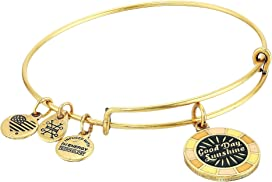 Alex and Ani Womens Tap Into Your Intuition Charm Bangle
