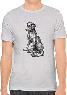 scruffy dog silver