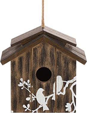 Topadorn Wooden Bird House Hanging Outdoor,Eco Friendly Materials and Decorative with Bird Printed
