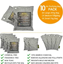 Bamboo Charcoal Air Purifying Bag - 10 Pack Activated Charcoal Bags for Shoes, Pet Odor Absorber & Moisture Eliminator - Home, basement, Kitchen, Closet, Car Deodorizer & Air Freshener